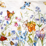 SI10中 F05 L727590 BUTTERFLIES AND BLOSSOMS