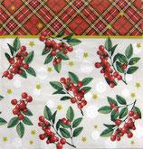 XS中 X17 DLX-12507 Christmas  Berris
