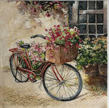 SI11中 F117 211503 Flower Bike
