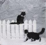 SPX小1 X33 3252154 Snowfall Cats