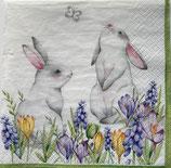 イースターD・中 F102 380073 Bunnies in Spring