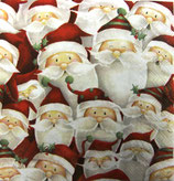 XS中  X01   DLX-33303680 Funny Santa
