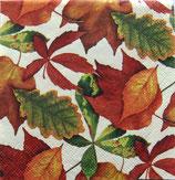 SP小3 F129 C242052 Foliage Ivoly