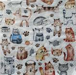 SI17中 F110 371752 Pet Cats