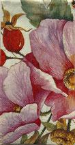 224-2 PT702400    Wild  Rose