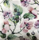 SP6中 F76 L089500 Pink Wild Roses