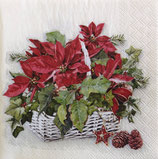 X'mas4中 X18 333133395 Poinsettia in basket
