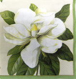 SI中2 F44  L8160 Magnolia