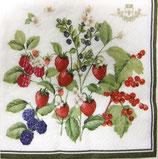 SI12 F12 414-BERR Berries