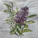 SP小5 F08 12514900 Lilac White