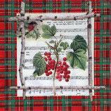 XS中 X21 3331655 Chalet Berries