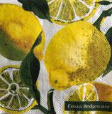 SP小5 F14 C862600 Lemons
