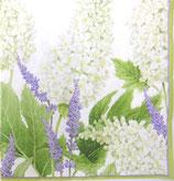 A中 F08 *13700L Fleurs du Muriage white