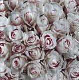 SI15中 F41 13311450 Pastel Roses