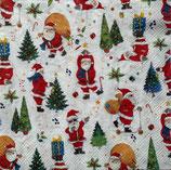 X'mas6中 X01 L915400 Santa Look