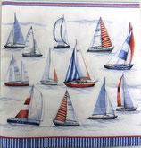 SI中2 F90 DL-13307480 Sailing
