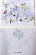 Carol Greeting Card NC2213 「胡蝶蘭」Printed in China