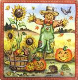 ハロウィン中 F66 13309270 Scarecrow