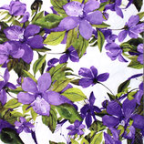 SI9中 F26 340415 Flowering Clematis Lilac