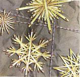 XS中 X12  DLX-560800 Stars of Straw 分