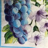 SI13中 F36 4-8643 葡萄