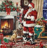SPX小2 X02 32515575 Santa interior