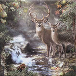SI10中 F133 211440 Deers on a Creek