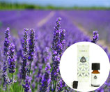 Lavendel olie Spijk EKO Chi