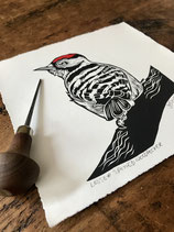 "Linocut Print ""Lesser Spotted Woodpecker"""