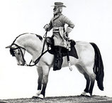 ACW C-63 General Robert E. Lee