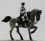 ACW Cavalry on Walking Horse