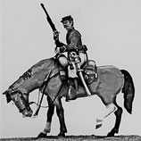 ACW Cavalry on Standing Horse