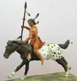 NIN C-25 Sioux Indian on mount