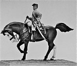 ACW Cavalry on Walking Horse