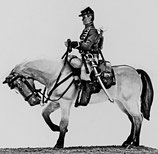 ACW Cavalry on Standing Horse