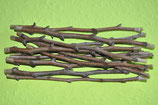 Birne - Frühe aus Trevoux | 1 Edelreis
