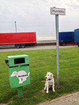 Hier dürfen Hunde müssen