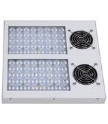 Hydroca Hobby 200 LED
