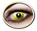 M05 Yelllow Crow Eye