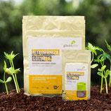 Glückspilze Mykorrhiza Soluble