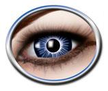 b02 Big Blue Eye