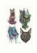 Set Katze Wolf Eule