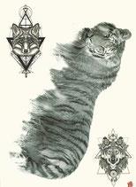 Tigerkörper