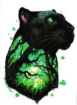 Panther grün
