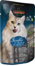 Forelle & Catnip 85g