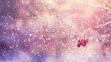 Twinkel stars