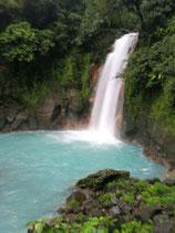 Tour a Rio Celeste y Orquideas