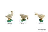 Patos (Ref. 2613)