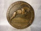 VA-B-0310-300   Bronzeplatte Schweiz