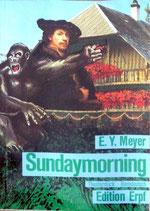 Meyer E. Y., Sundaymorning